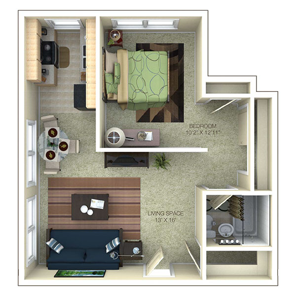 1 Bed 1 Bath Partial Remodel